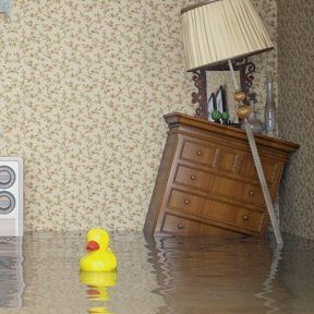 flood insurance with rubber duck
